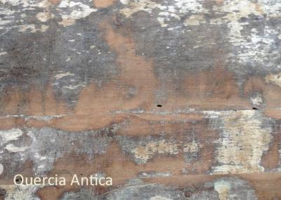 4 Quercia antica